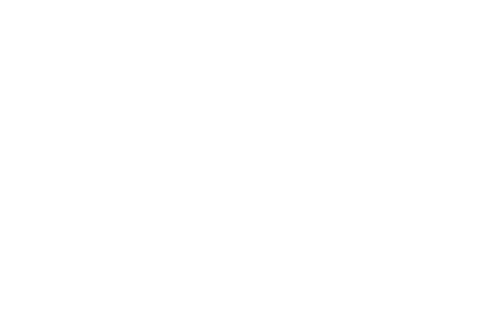 Aluminum Tracks